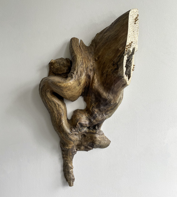 Balance, 1 by Molly Gambardella
