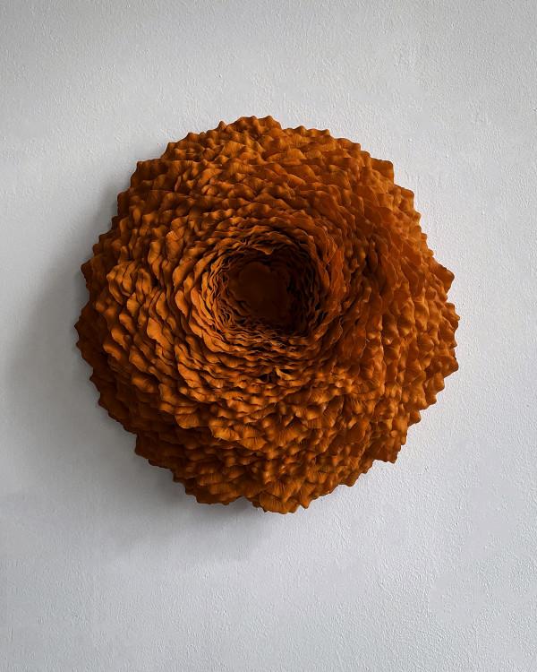 Lichen 5 by Molly Gambardella