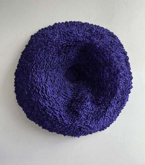 Lichen 7 by Molly Gambardella