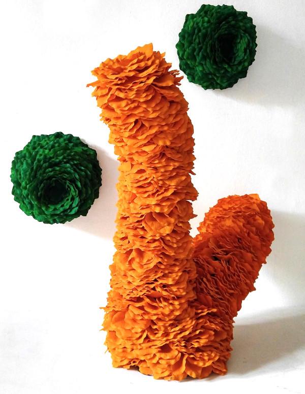 Fruticose Lichen by Molly