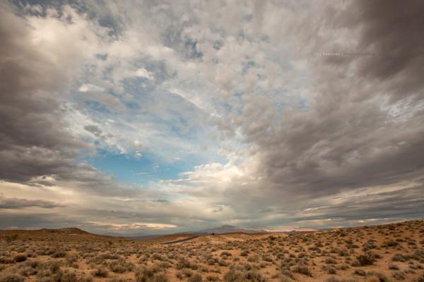 Lone Stall by Jill Sanders