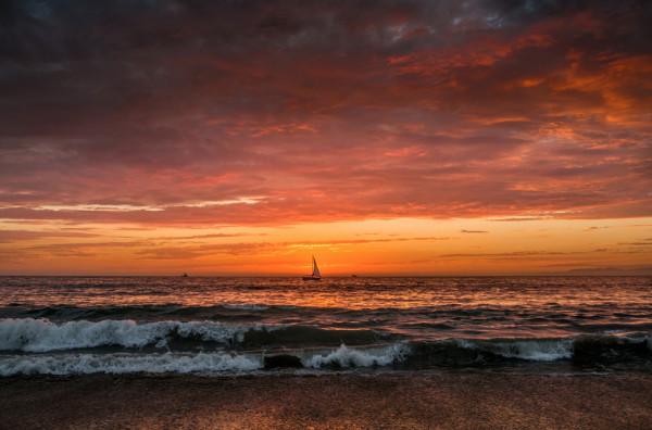 Lone Sail by Jill Sanders