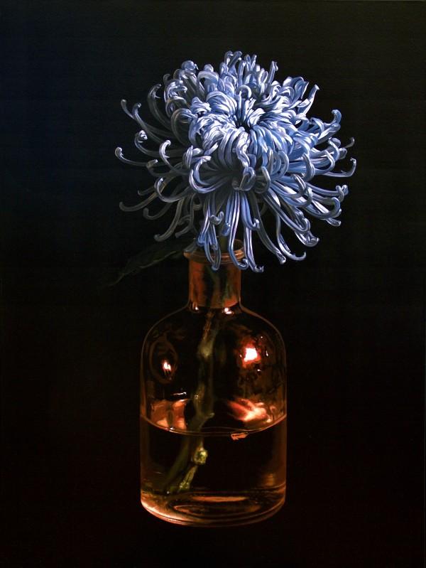 Chrysanthemum goes to the Oscars by Jo Kreyl