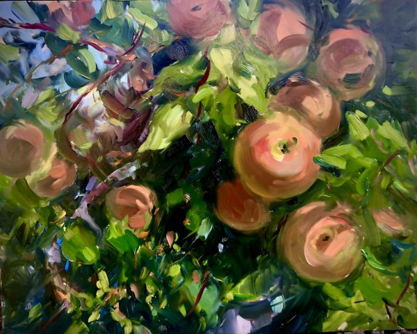 Apples at Melick's Farm by Laurie Maher