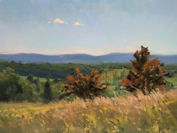 Fox Hill Fields by Laurie Maher