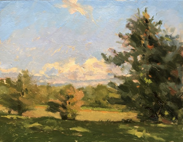 Farmstead fields by Laurie Maher