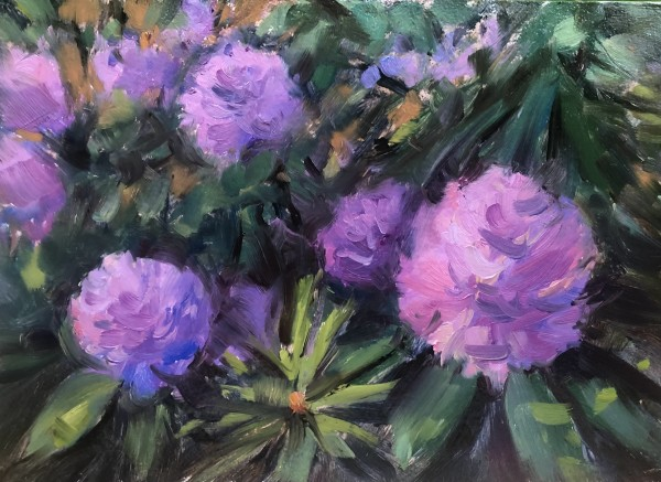 Rhododendrons by Laurie Maher