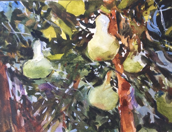 Gourds- After John Singer Sargent by Laurie Maher