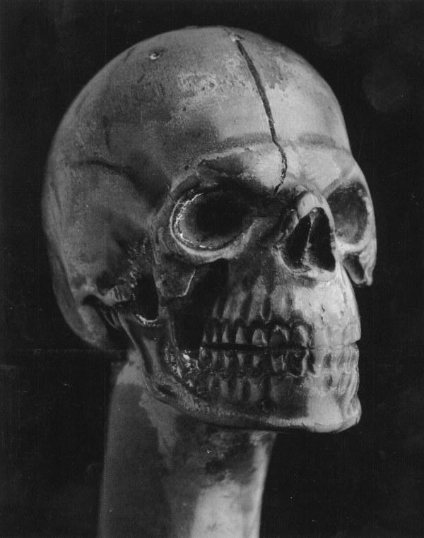 Skull Walking Cane by Roger Mapplethorpe