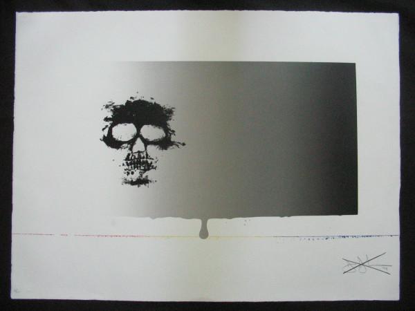 Untitled (Skull) by Jasper Johns