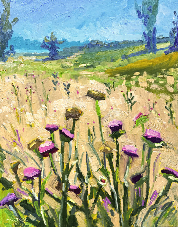 Thistles Near Ellis Bay by Michael Anderson