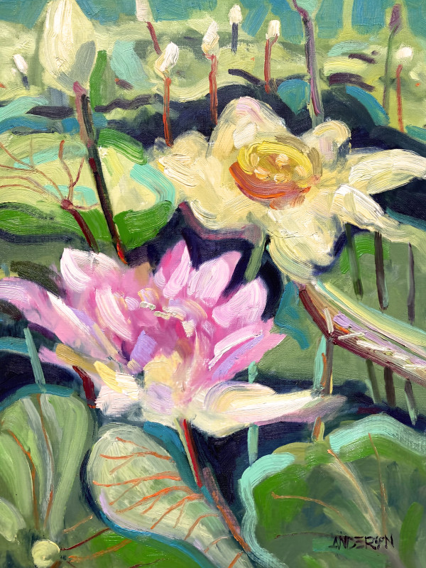 Lotus Blossoms, Tower Grove Park by Michael Anderson