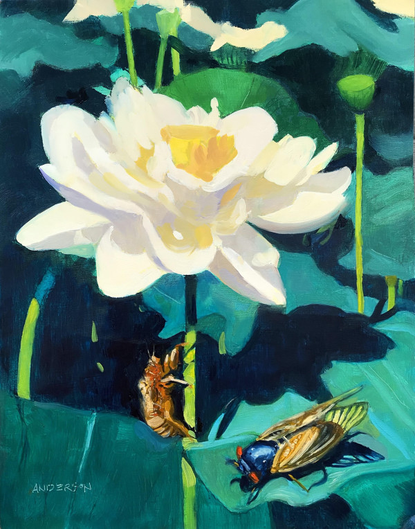 Lotus Blossom And Cicada by Michael Anderson