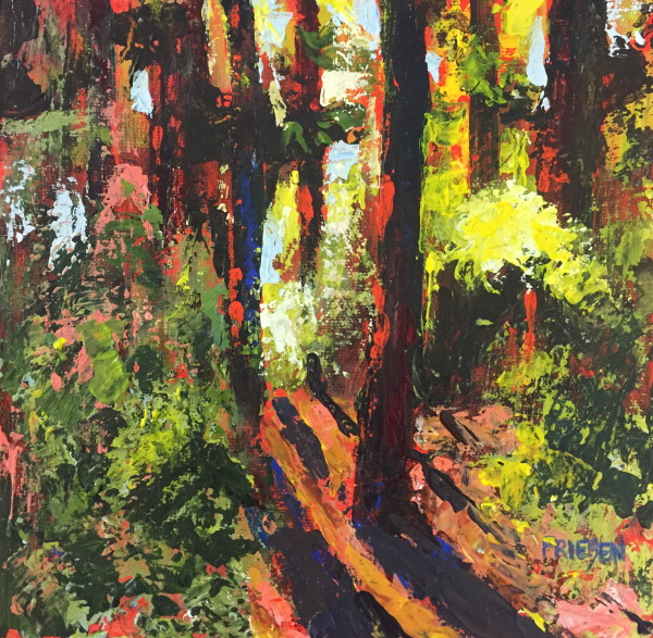 Forest Light by Holly Friesen