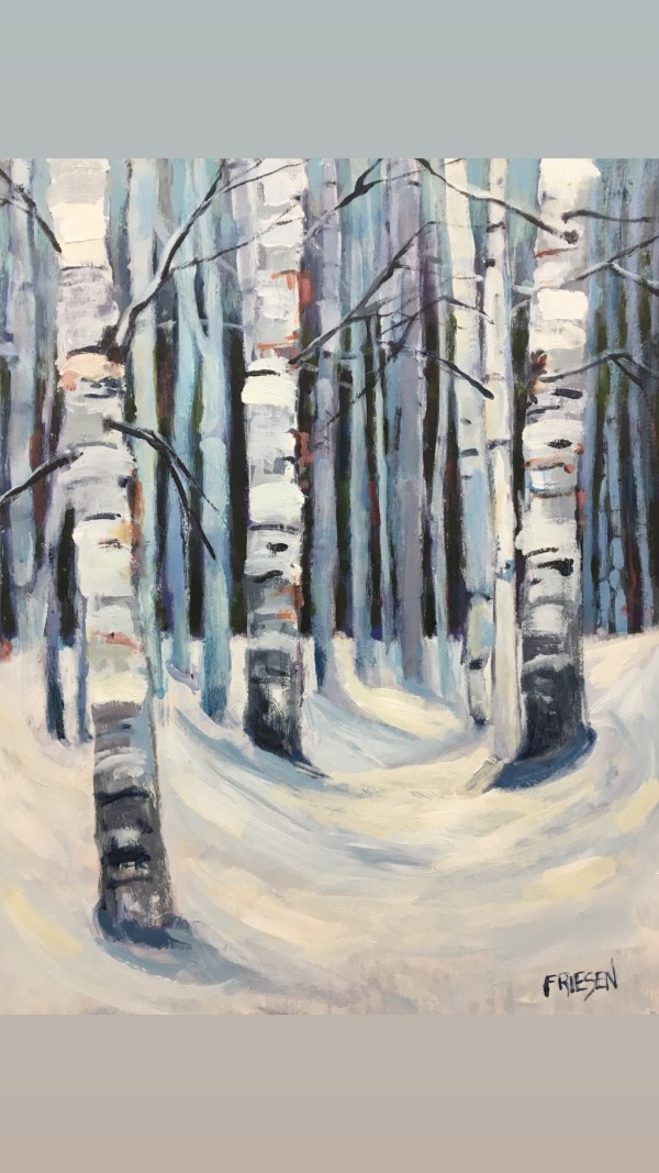 Birch Study 2 by Holly Friesen