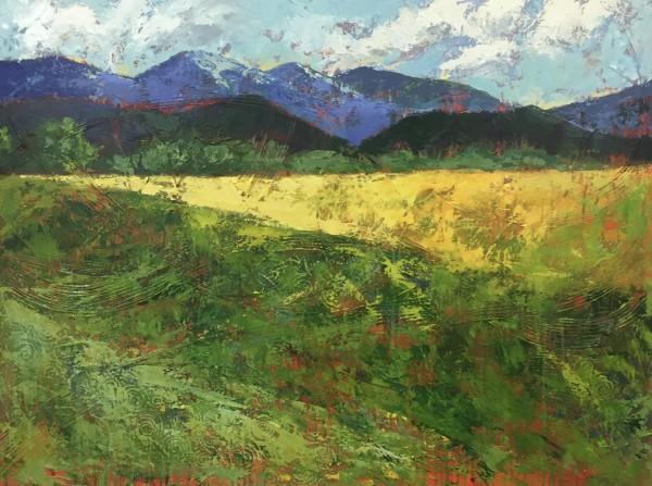 Field Flow by Holly Friesen