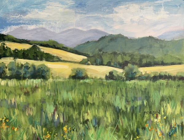 Summer Fields by Holly Friesen