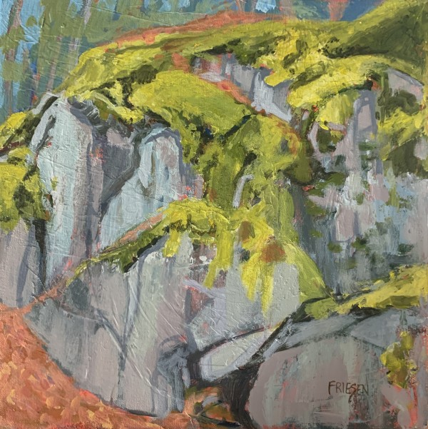Rock Study by Holly Friesen