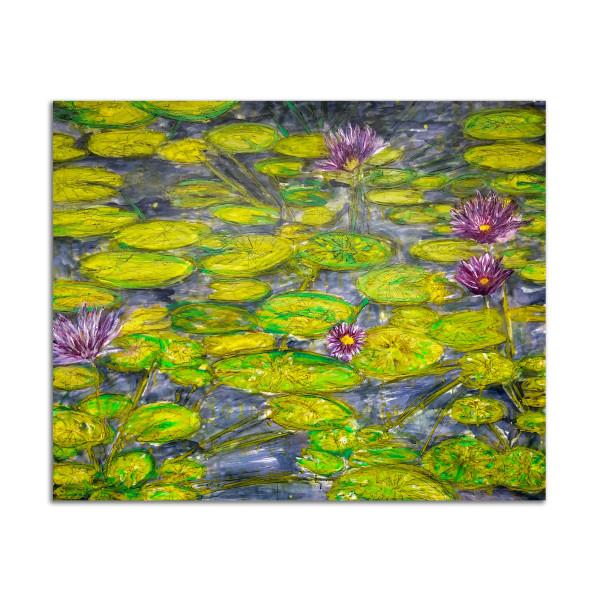 Atlantis Waterlilies by Kat Allie