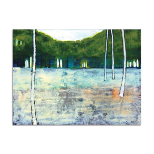 Birch Grove by T.D. Scott