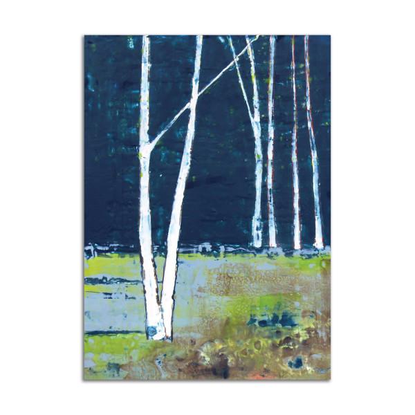 Birch by T.D. Scott