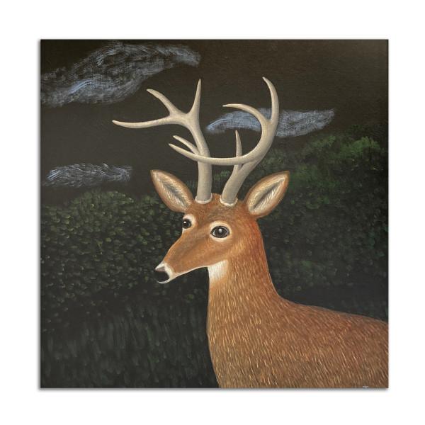 Buck by Jane Troup