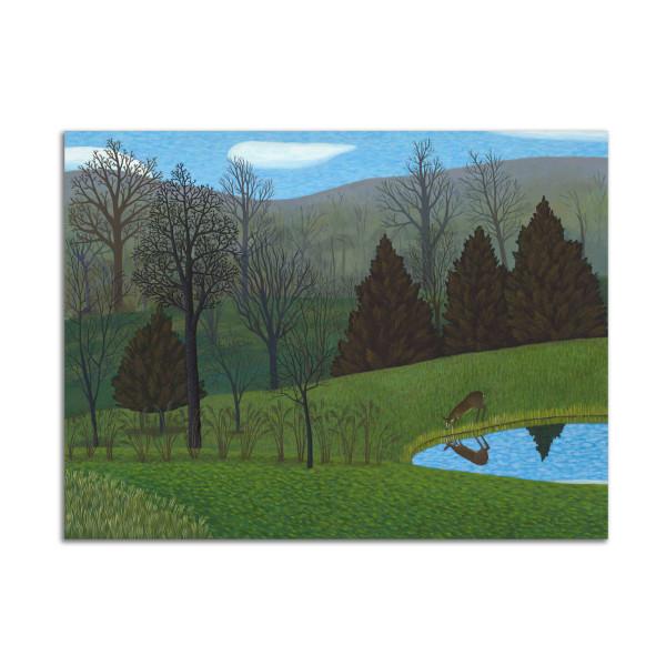 Deer at Pond by Jane Troup