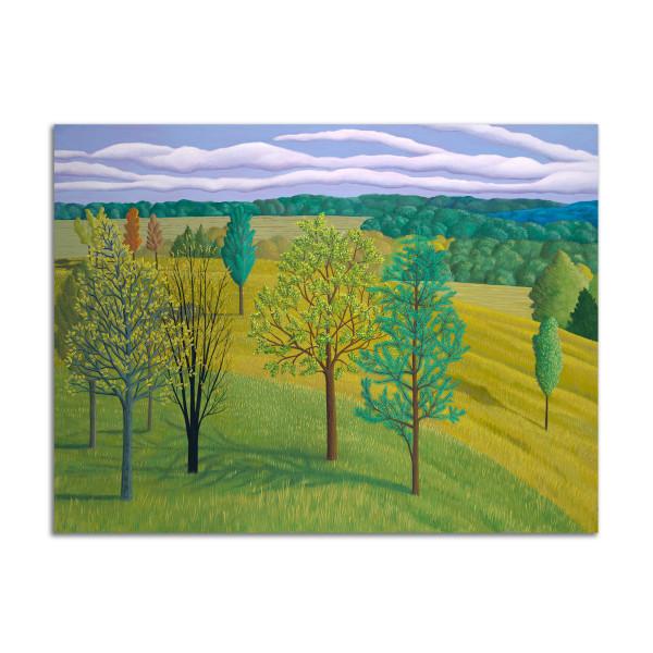 Falling Field by Jane Troup
