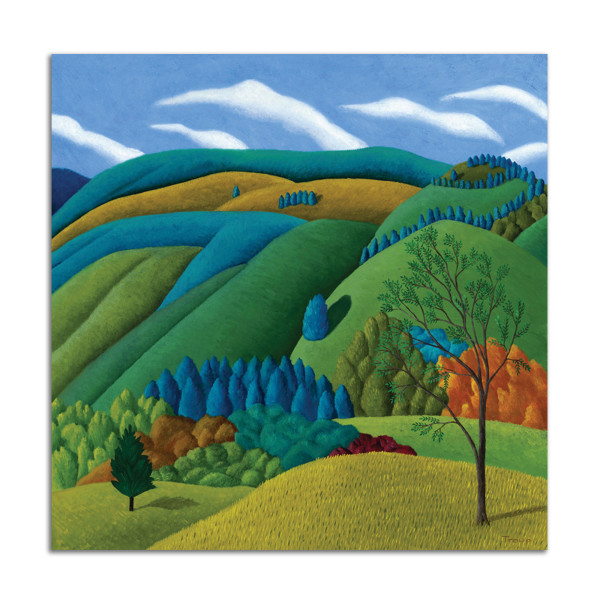 Fields and Mountains by Jane Troup