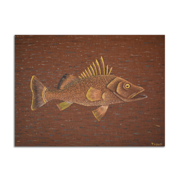 Fish with Large Mouth by Jane Troup
