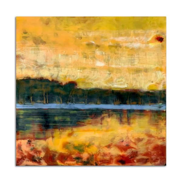 Golden by T.D. Scott