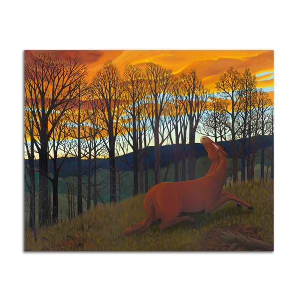 Horse and Sunset by Jane Troup