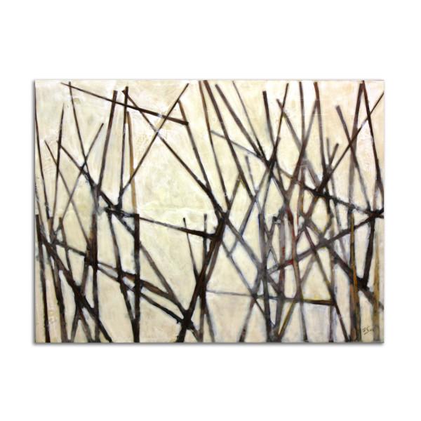 Marsh by T.D. Scott