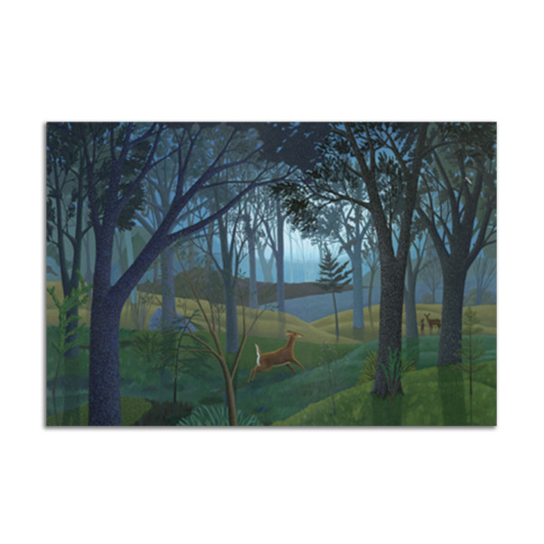Morning Forest by Jane Troup