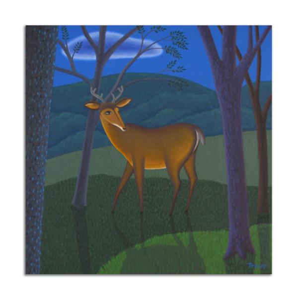 Night Deer by Jane Troup