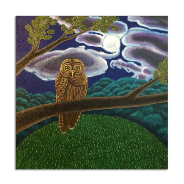 Night Owl by Jane Troup