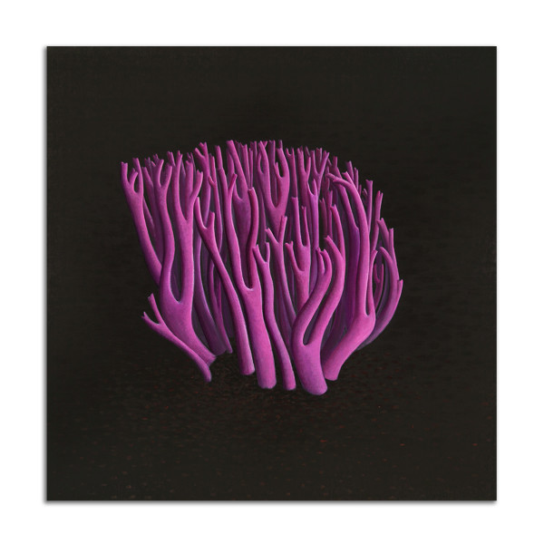 Pink Coral by Jane Troup