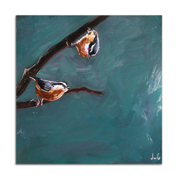 Red Breasted Nuthatches by Jared Gillett
