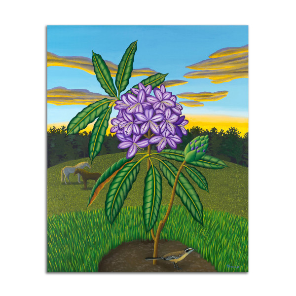 Rhododendron by Jane Troup