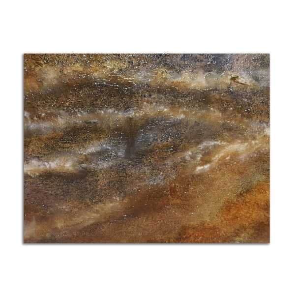Sedimentary Crust by Shelly Forbes