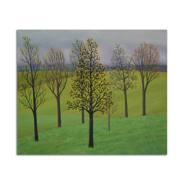 Seven Trees by Jane Troup