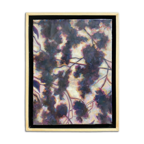 Shadow Play II by Christie Snelson