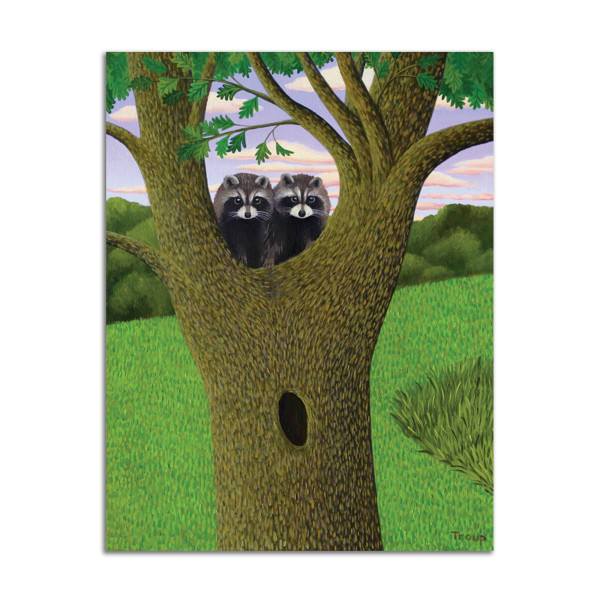 The Raccoons by Jane Troup