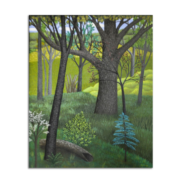 Trees and Log by Jane Troup