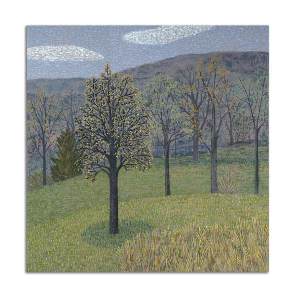 Trees on Gray by Jane Troup