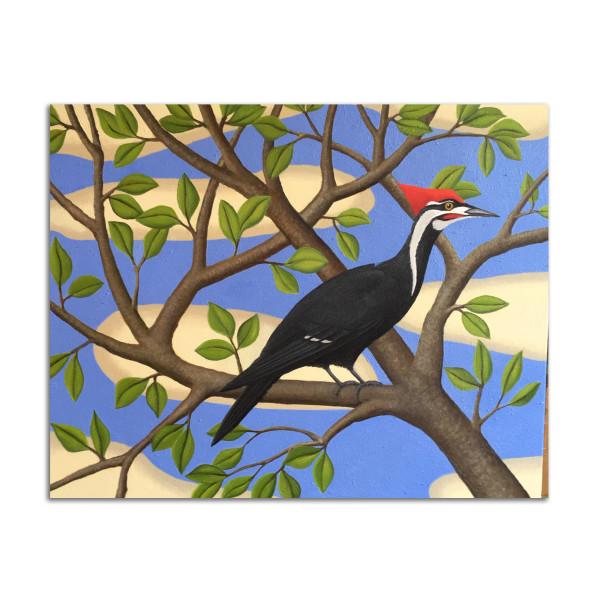 Woodpecker by Jane Troup