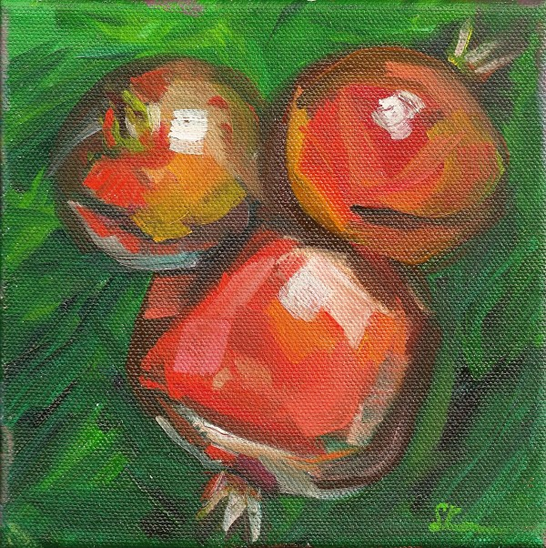 Cluster of Pomegranates by Sonya Kleshik