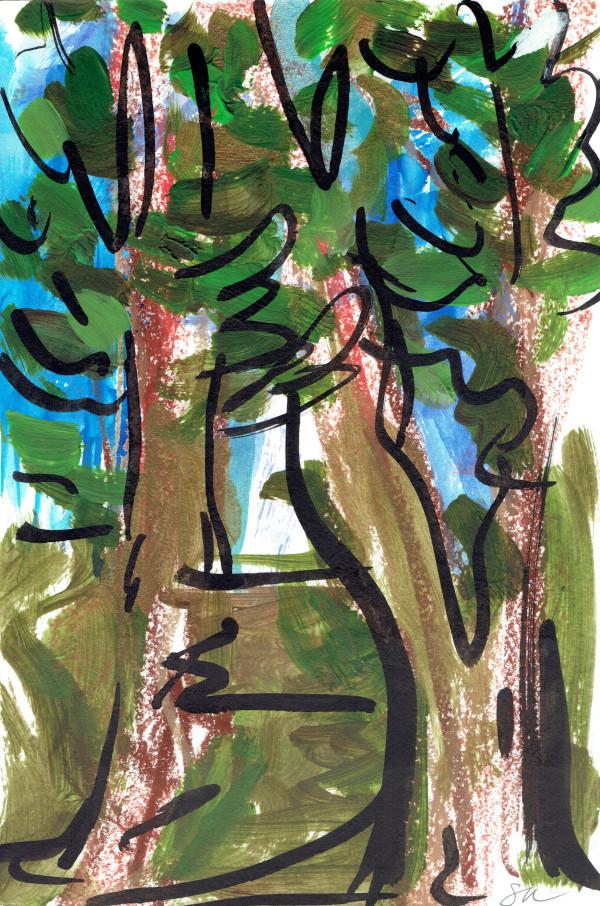 Redwoods II by Sonya Kleshik