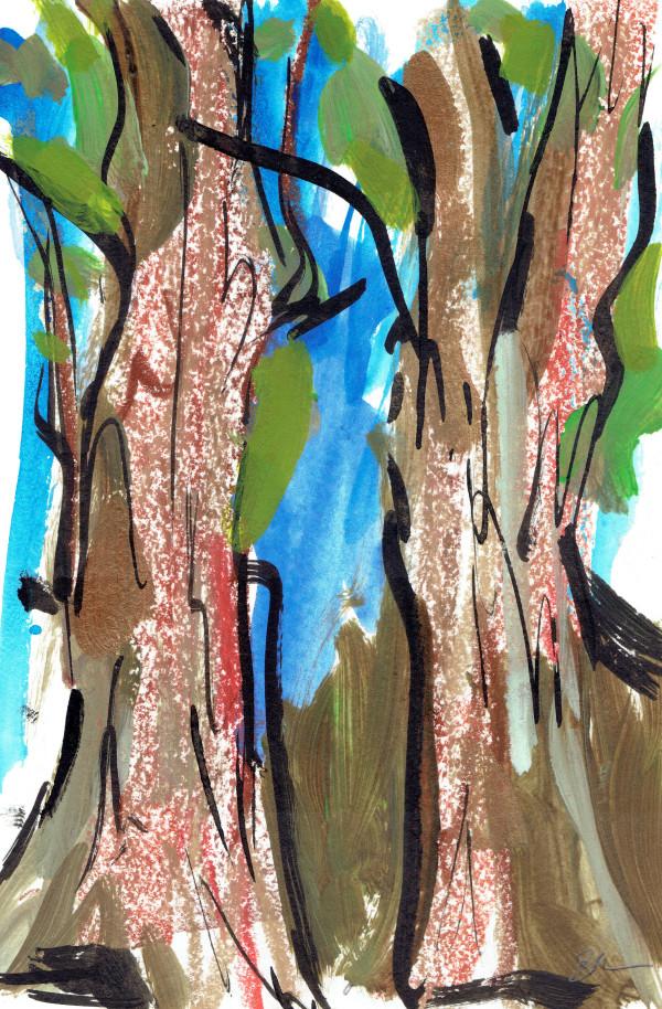 Redwoods VII by Sonya Kleshik