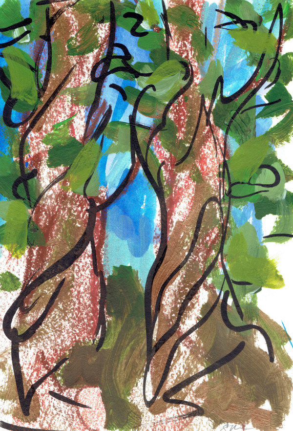 Redwoods V by Sonya Kleshik